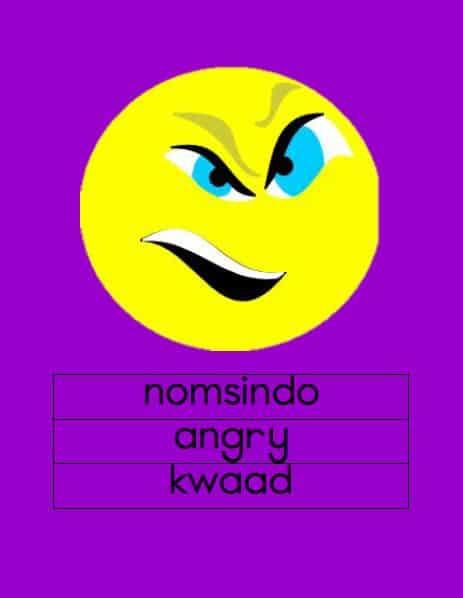 Xhosa Emosies Muurkaarte